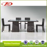 Rattan Furniture, Dining Table & Chair (DH-9585)
