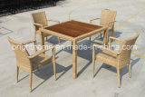 Modern Design Dining Chair and Table with Teak Wood Top/Leisure Outdoor Furniture (BP-3030)
