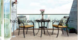 Outdoor /Rattan / Garden / Patio/ Hotel Furniture Polywood Furniture Chair& Table Set (HS3025C&HS 6123DT)
