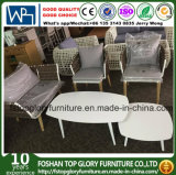New Design Belt Woven Aluminum Frame Love Seat Sofa Outdoor Furniture