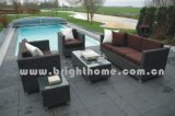Garden Furniture / Outdoor Rattan Furniture (BG-100)