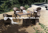 Wicker Outdoor Furniture Bp-3017D-a