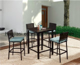 Outdoor /Rattan / Garden / Patio / Hotel Furniture Plastic Wood Bar Chair& Bar Table Set (HS 3001SC & HS 7108ADT)