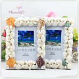 Home Decoration Shell MDF Photo Frame (4