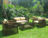 European Style Garden Rattan or Wicker Sofa Set (WS-15595)