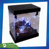 Transparent Acrylic LED Display Cabinet with Spotlight Inside, Top and Base Are with Black Matt Acrylic