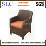 Rattan Chairs / Armchairs of Rattant Synthetic (SC-B1078-1)