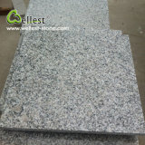 Grey Granite G603 for Flooring and Wall Cladding Tile