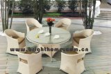 Hot Sale Patio Wicker Garden Dining Chair and Tabl...