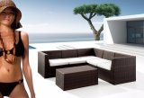 Rattan Sofa Set 8 Seats with Coffee Table